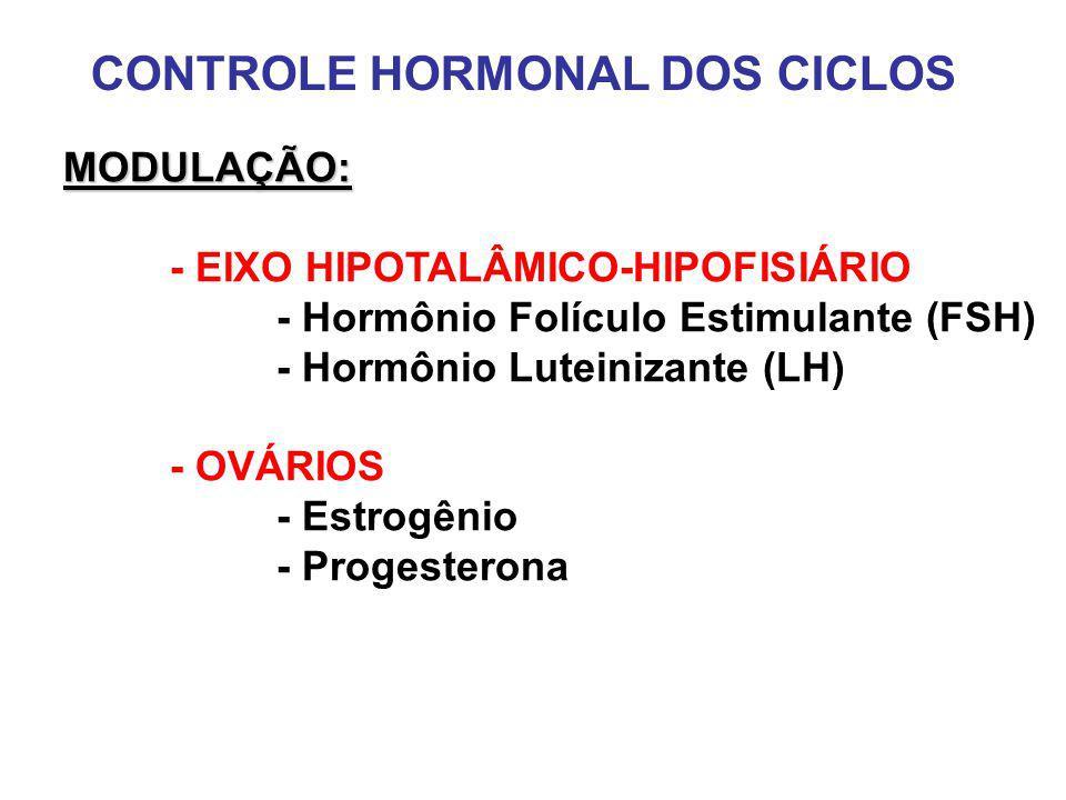 CONTROLE HORMONAL DOS CICLOS