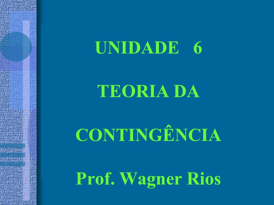 UNIDADE 6 TEORIA DA CONTINGÊNCIA Prof. Wagner Rios
