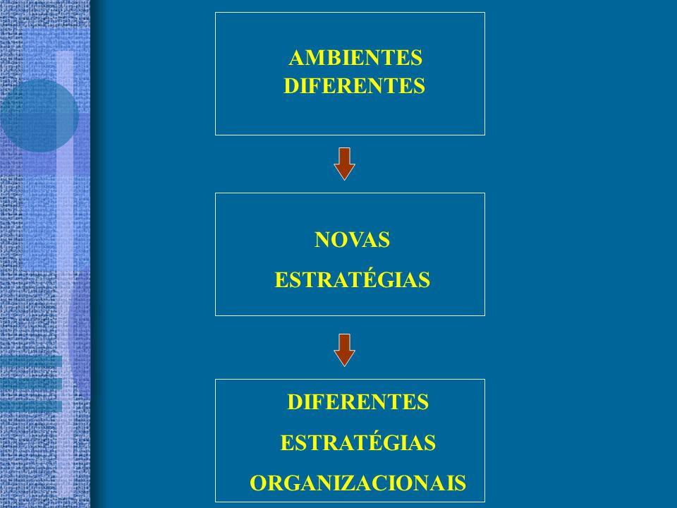 AMBIENTES DIFERENTES NOVAS ESTRATÉGIAS DIFERENTES ESTRATÉGIAS ORGANIZACIONAIS