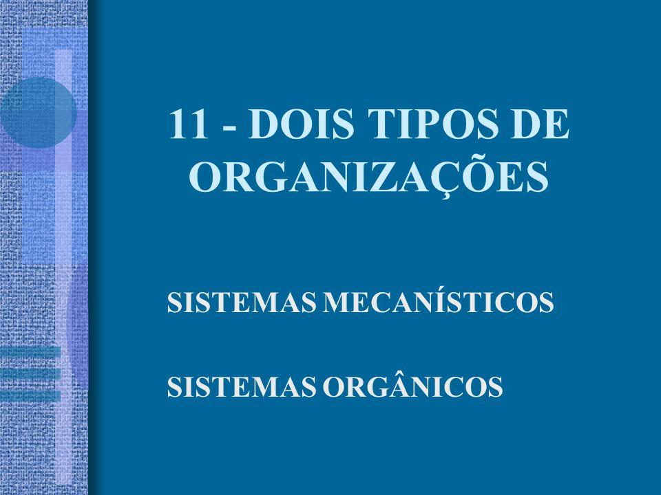 11 - DOIS TIPOS DE ORGANIZAÇÕES