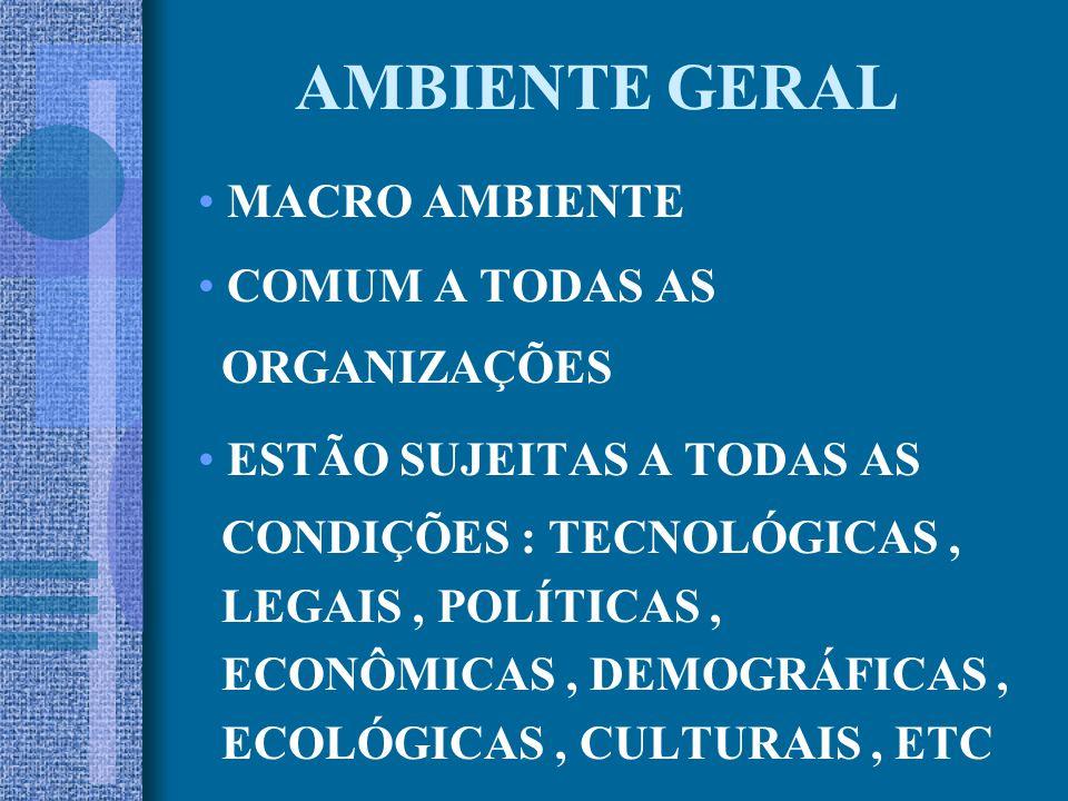 AMBIENTE GERAL MACRO AMBIENTE COMUM A TODAS AS ORGANIZAÇÕES