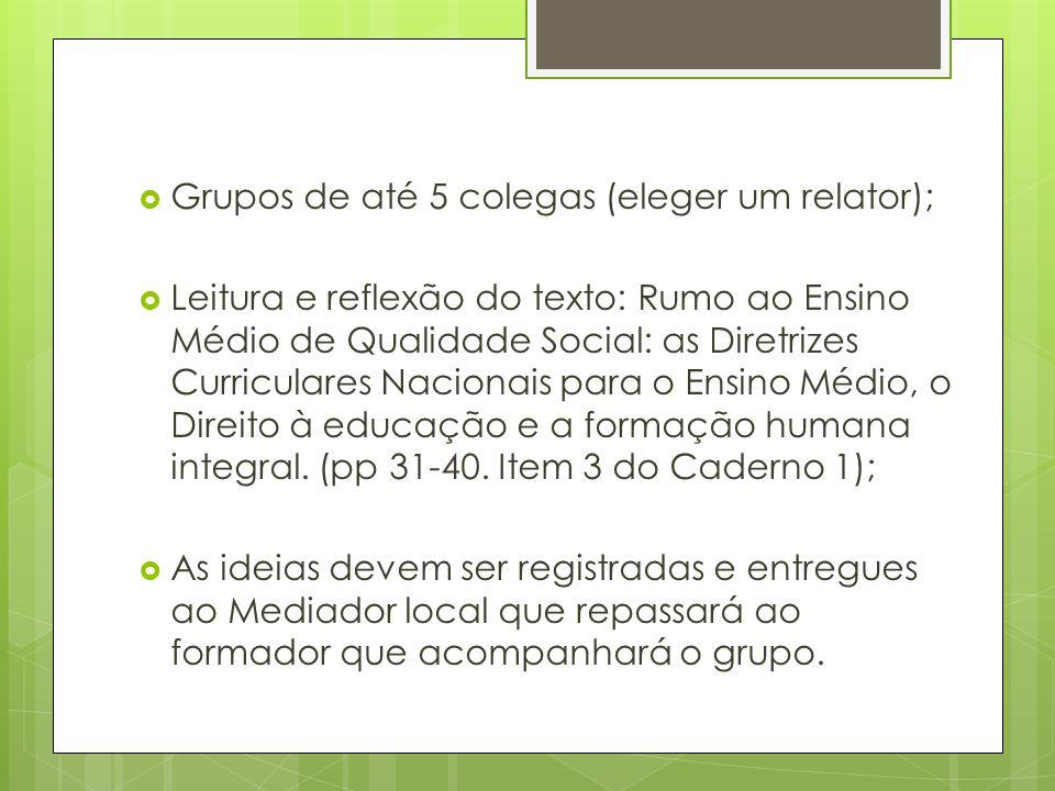 Grupos de até 5 colegas (eleger um relator);