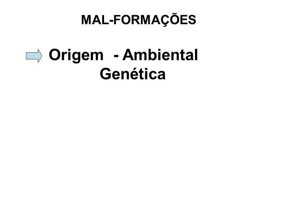 MAL-FORMAÇÕES Origem - Ambiental Genética