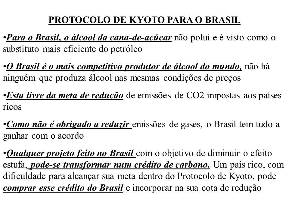 PROTOCOLO DE KYOTO PARA O BRASIL