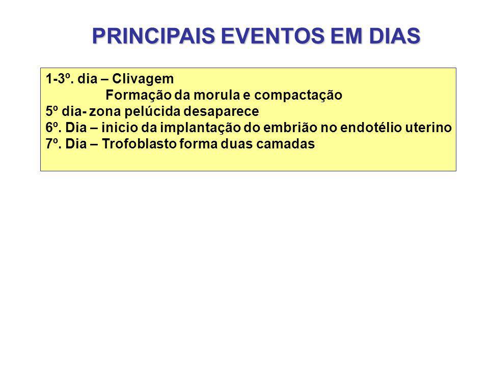 PRINCIPAIS EVENTOS EM DIAS