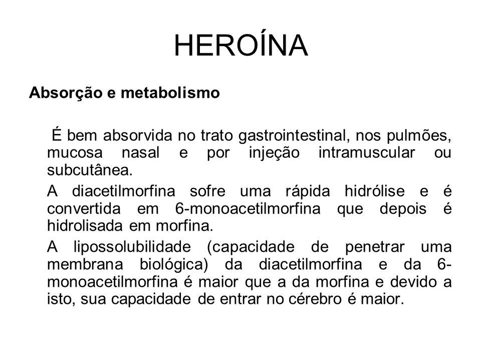 HEROÍNA Absorção e metabolismo