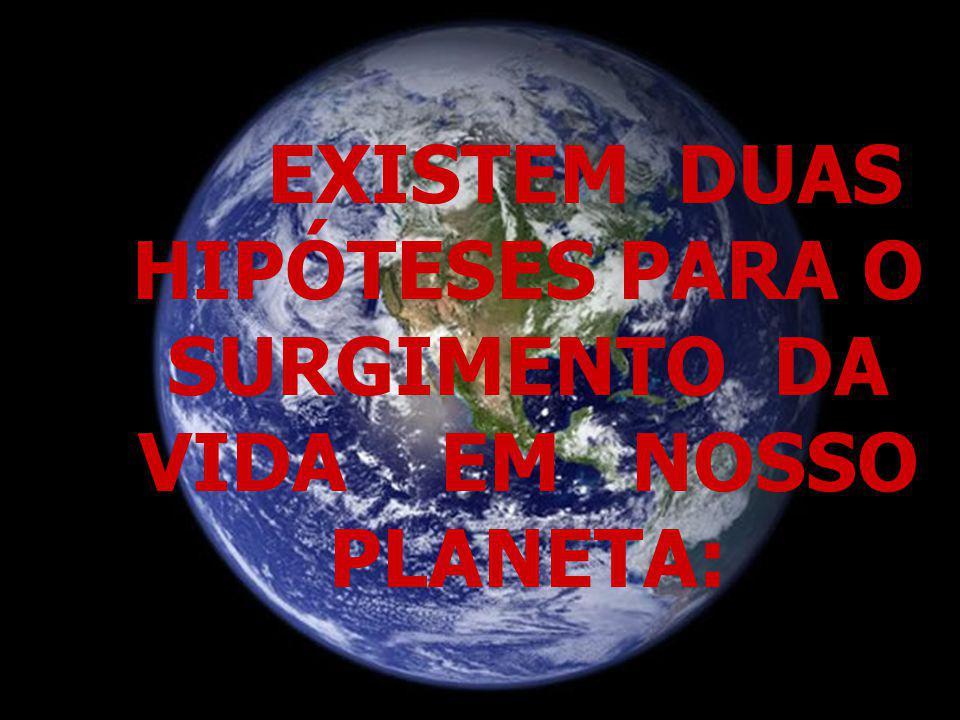 EXISTEM DUAS HIPÓTESES PARA O SURGIMENTO DA VIDA EM NOSSO PLANETA:
