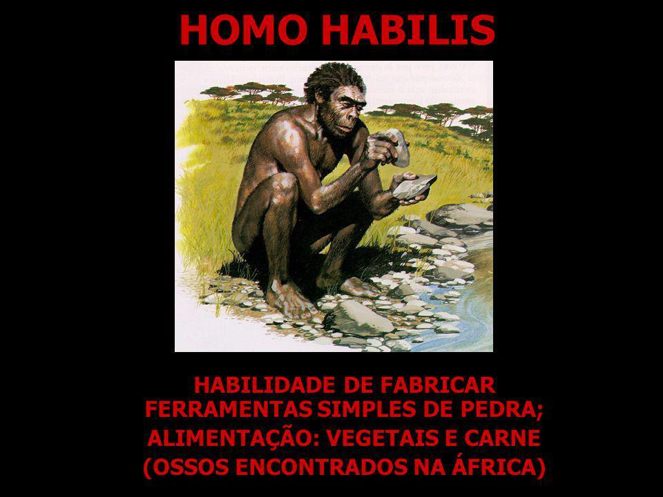 HOMO HABILIS HABILIDADE DE FABRICAR FERRAMENTAS SIMPLES DE PEDRA;