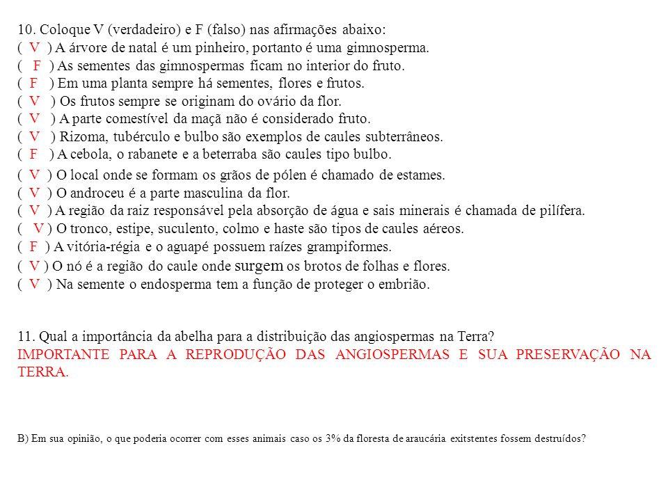 10. Coloque V (verdadeiro) e F (falso) nas afirmações abaixo: