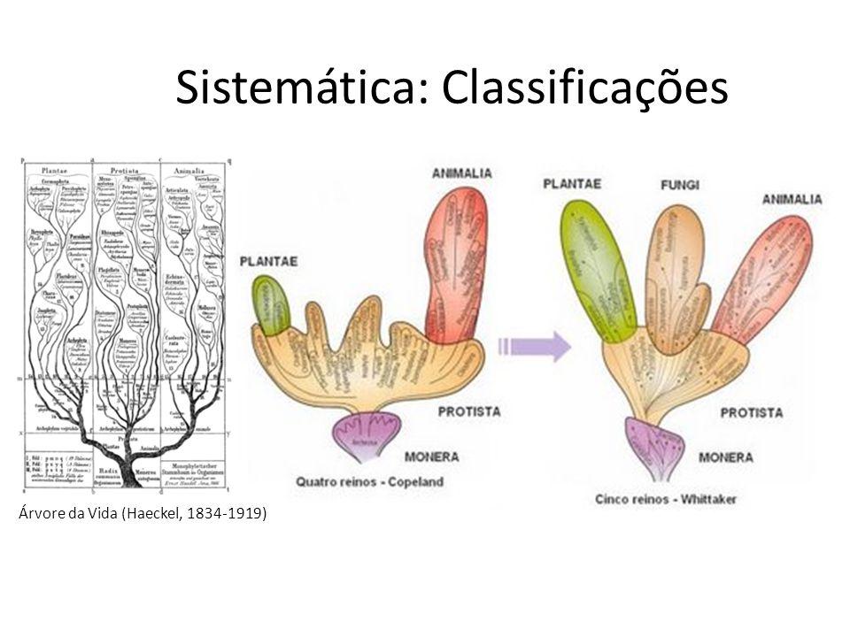 Sistemática: Classificações
