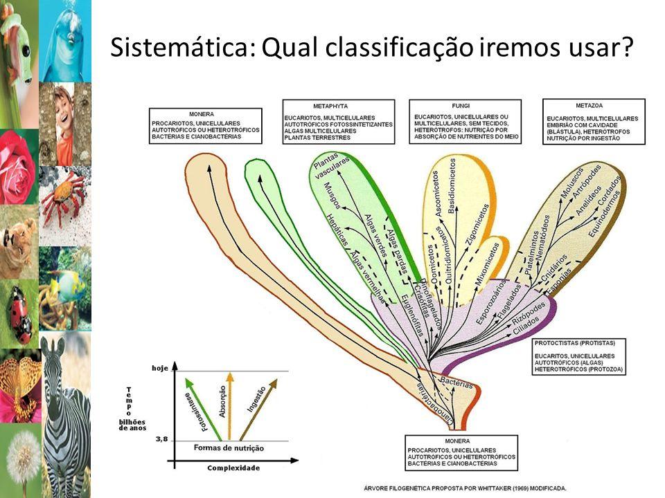 Sistemática: Qual classificação iremos usar