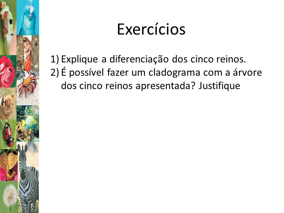 Exercícios Explique a diferenciação dos cinco reinos.
