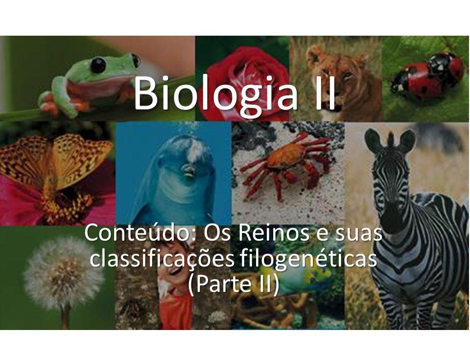 Conteúdo: Os Reinos e suas classificações filogenéticas (Parte II)