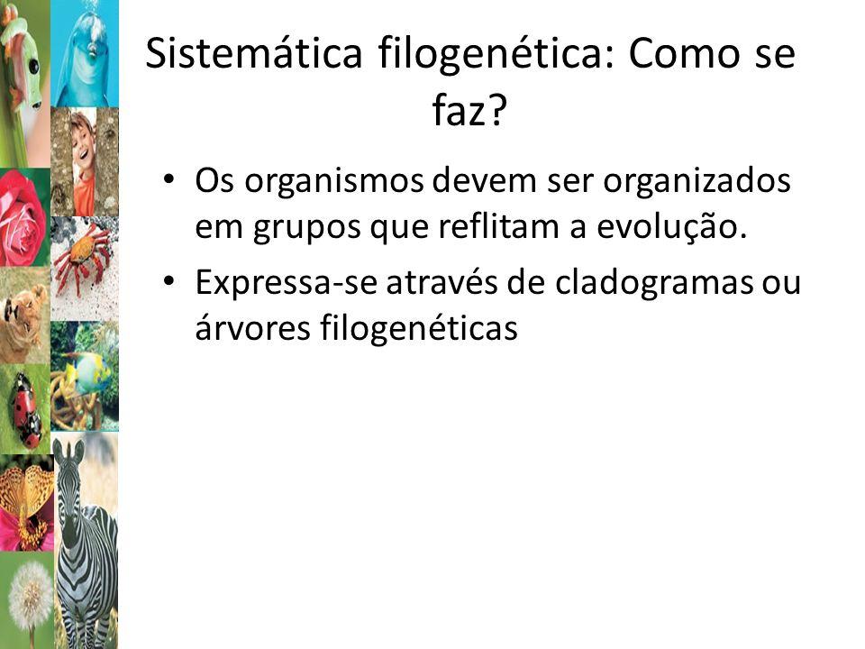 Sistemática filogenética: Como se faz