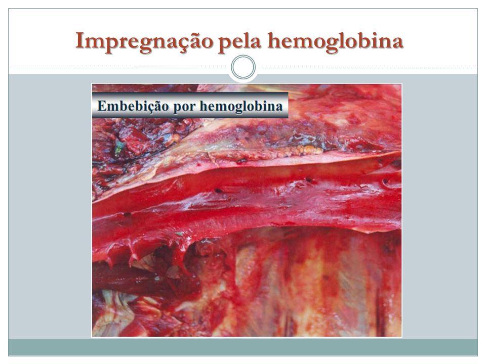Impregnação pela hemoglobina