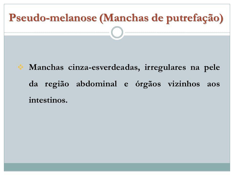 Pseudo-melanose (Manchas de putrefação)