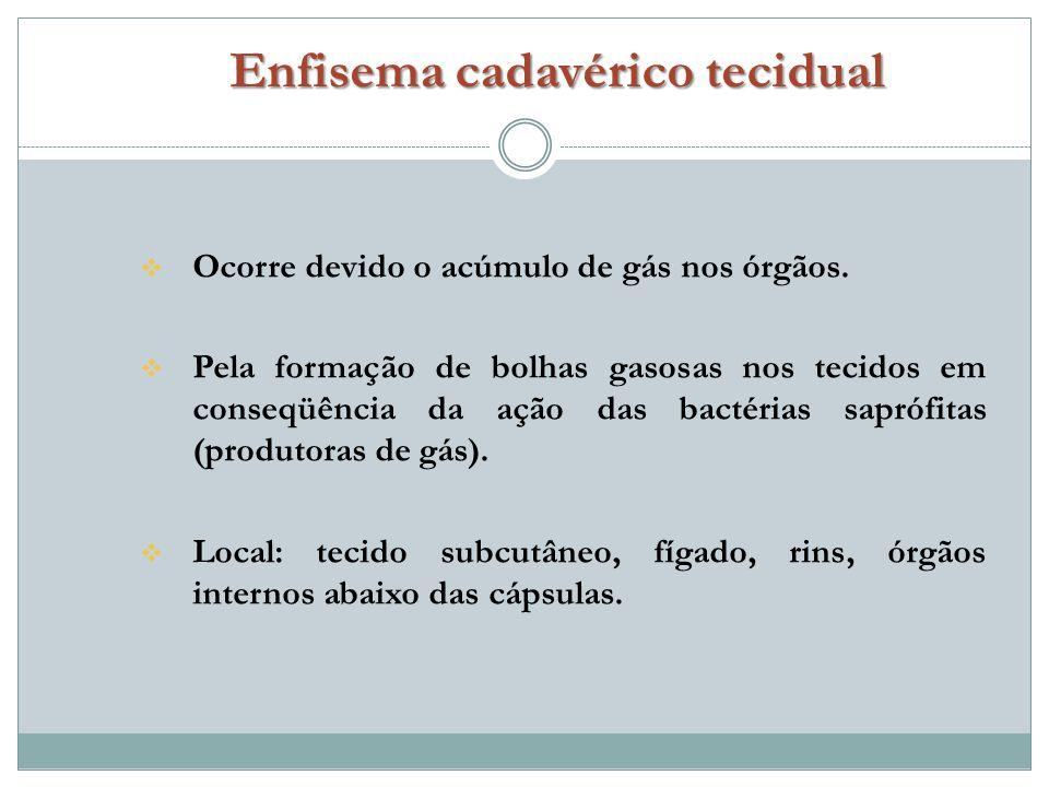Enfisema cadavérico tecidual