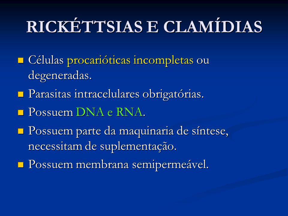 RICKÉTTSIAS E CLAMÍDIAS