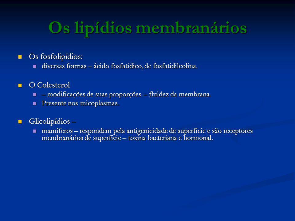 Os lipídios membranários