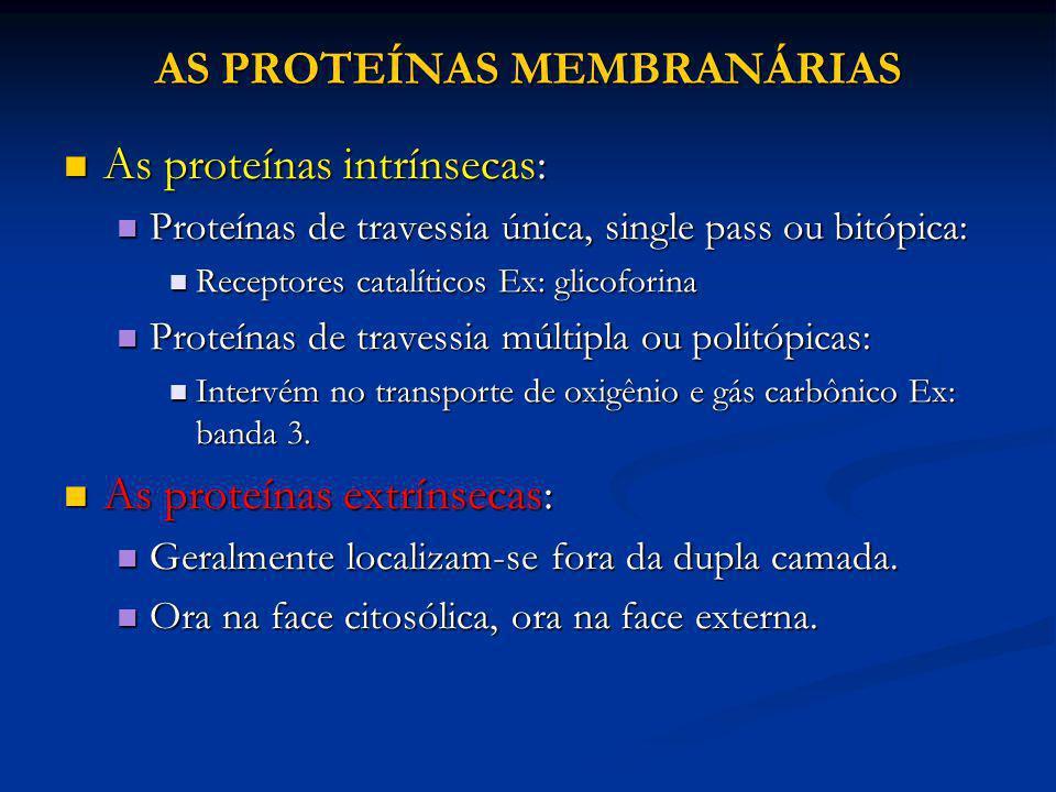 AS PROTEÍNAS MEMBRANÁRIAS