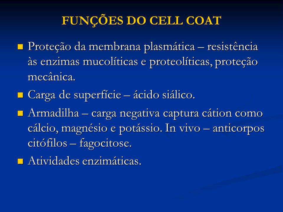 FUNÇÕES DO CELL COAT Proteção da membrana plasmática – resistência às enzimas mucolíticas e proteolíticas, proteção mecânica.