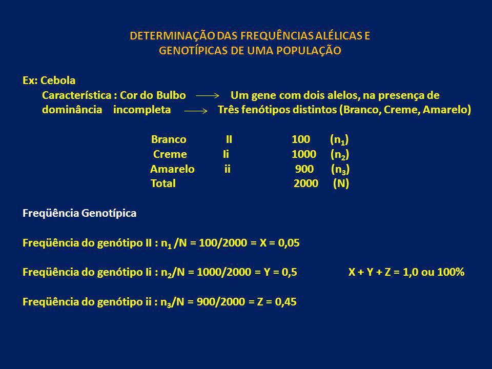 DETERMINAÇÃO DAS FREQUÊNCIAS ALÉLICAS E GENOTÍPICAS DE UMA POPULAÇÃO