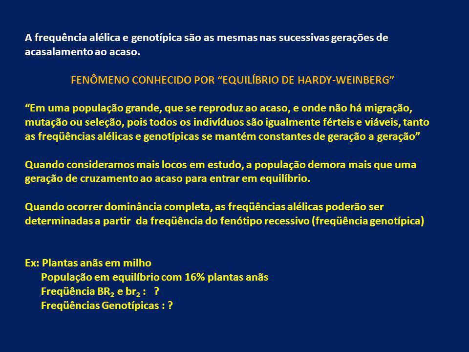 FENÔMENO CONHECIDO POR EQUILÍBRIO DE HARDY-WEINBERG
