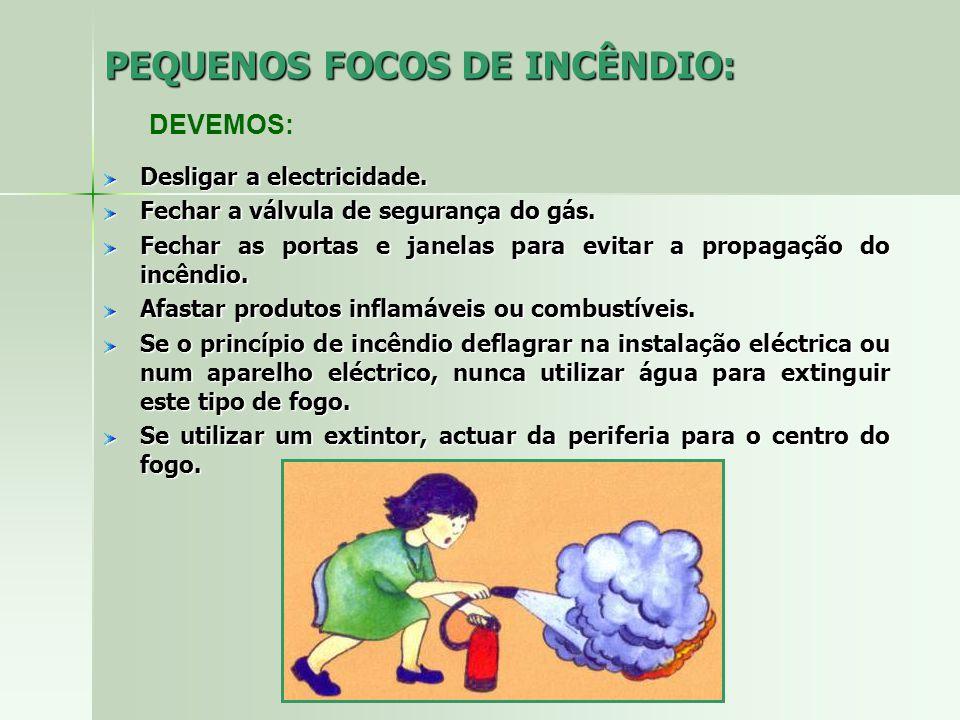 PEQUENOS FOCOS DE INCÊNDIO: