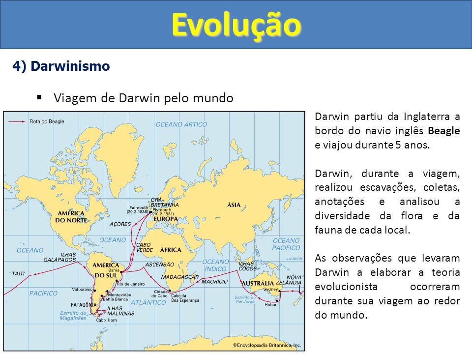 Evolução Viagem de Darwin pelo mundo 4) Darwinismo