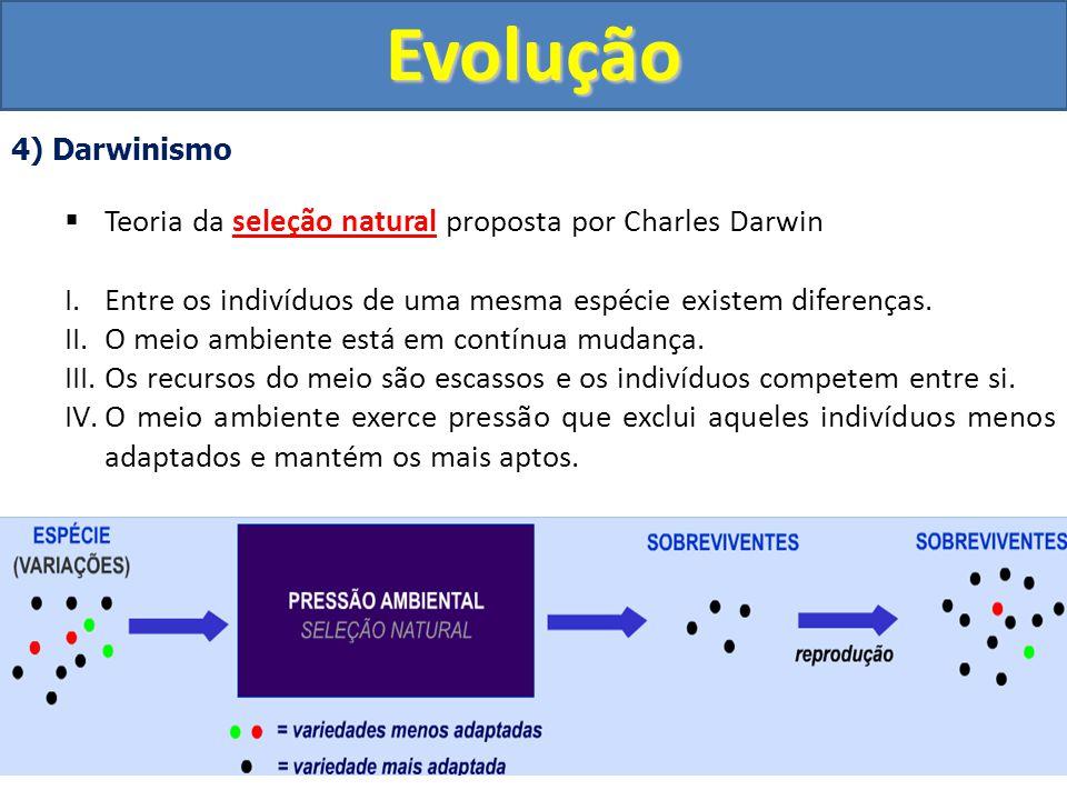 Evolução Teoria da seleção natural proposta por Charles Darwin