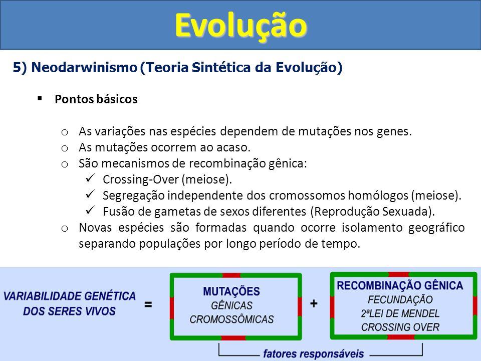Evolução 5) Neodarwinismo (Teoria Sintética da Evolução)