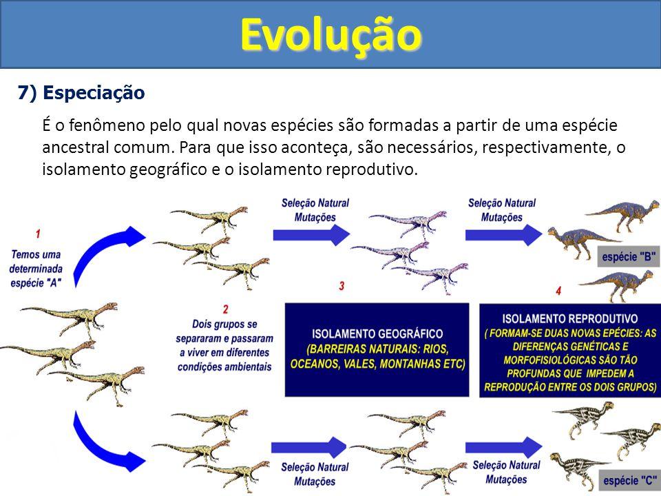 Evolução 7) Especiação.