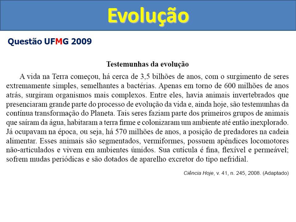 Evolução Questão UFMG 2009