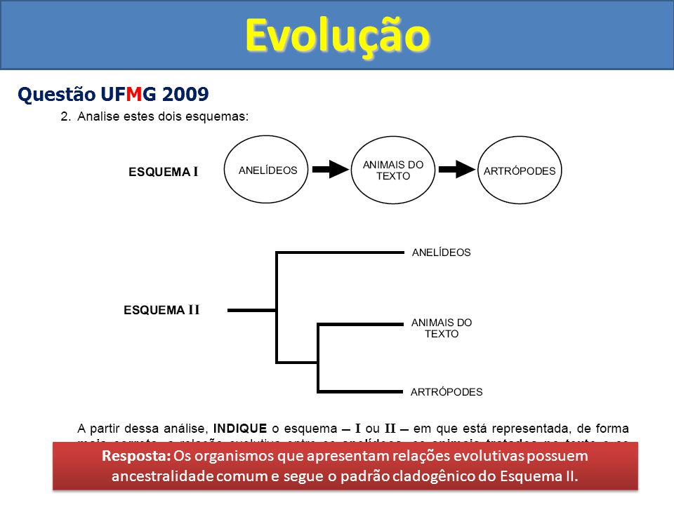 Evolução Questão UFMG 2009.