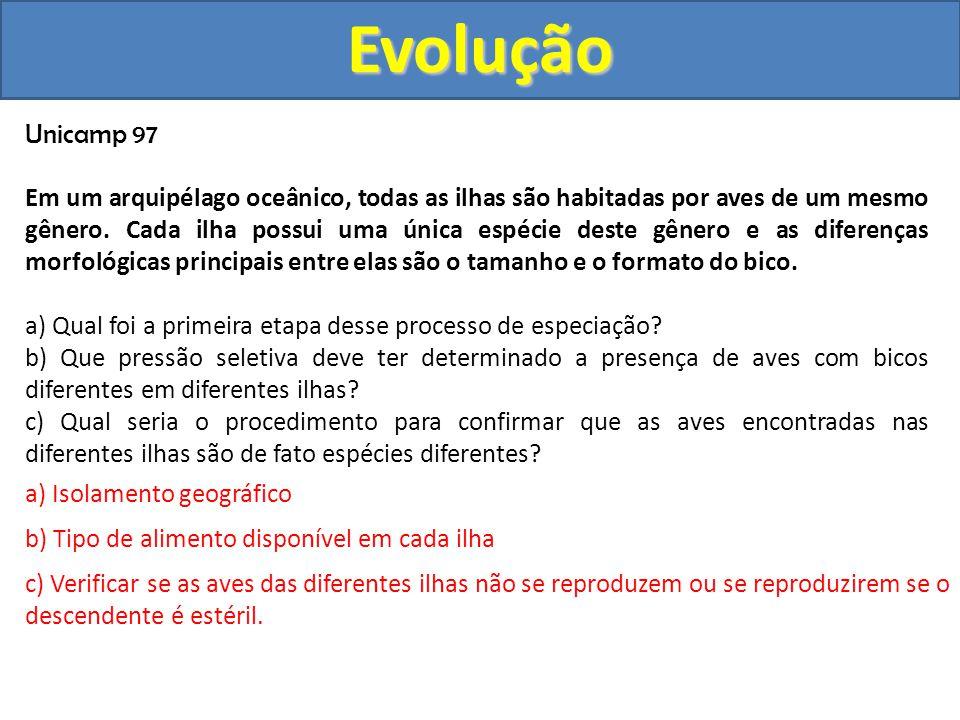Evolução Unicamp 97.