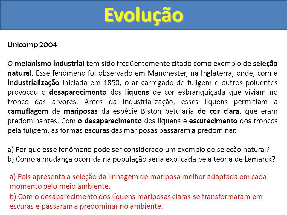Evolução Unicamp 2004.