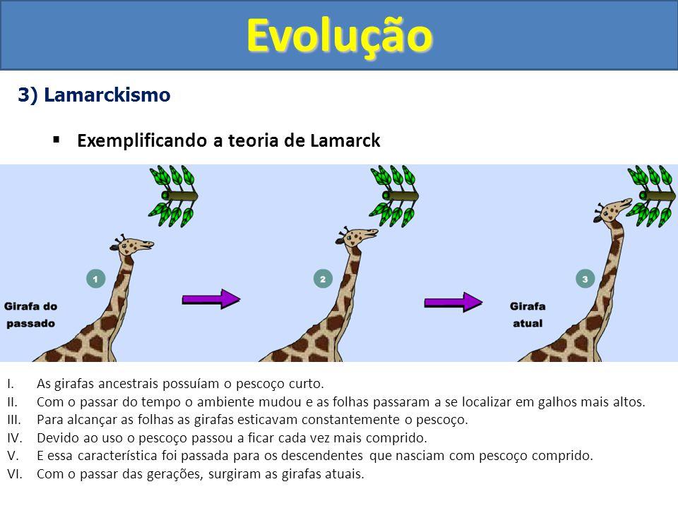 Evolução Exemplificando a teoria de Lamarck 3) Lamarckismo