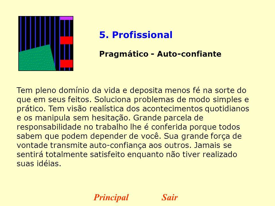 5. Profissional Principal Sair Pragmático - Auto-confiante