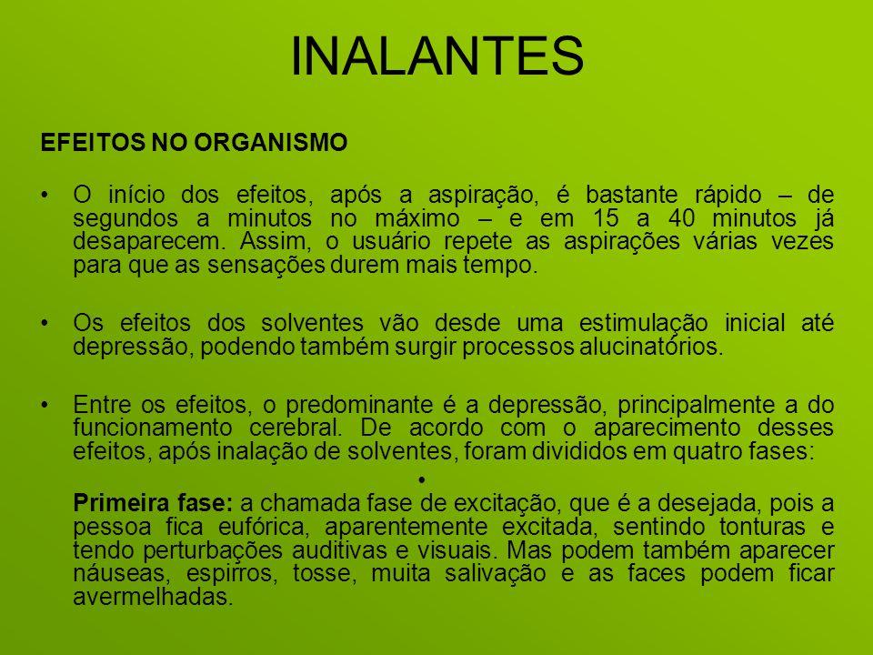INALANTES EFEITOS NO ORGANISMO