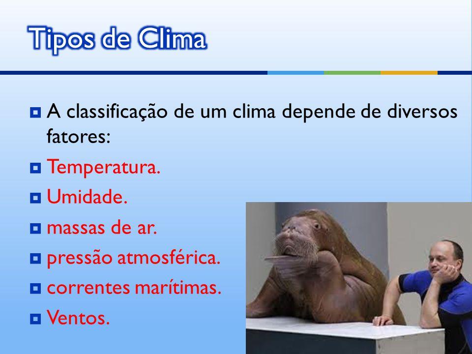 Tipos de Clima A classificação de um clima depende de diversos fatores: Temperatura. Umidade. massas de ar.