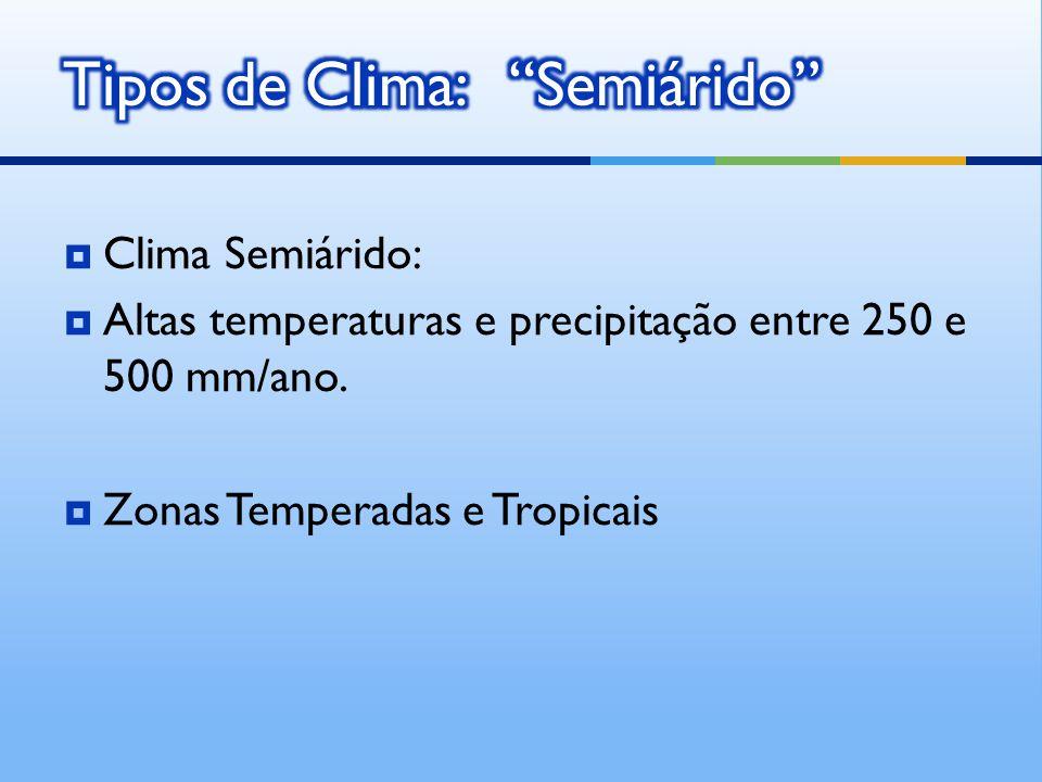Tipos de Clima: Semiárido