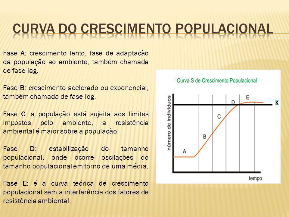 Curva do crescimento populacional