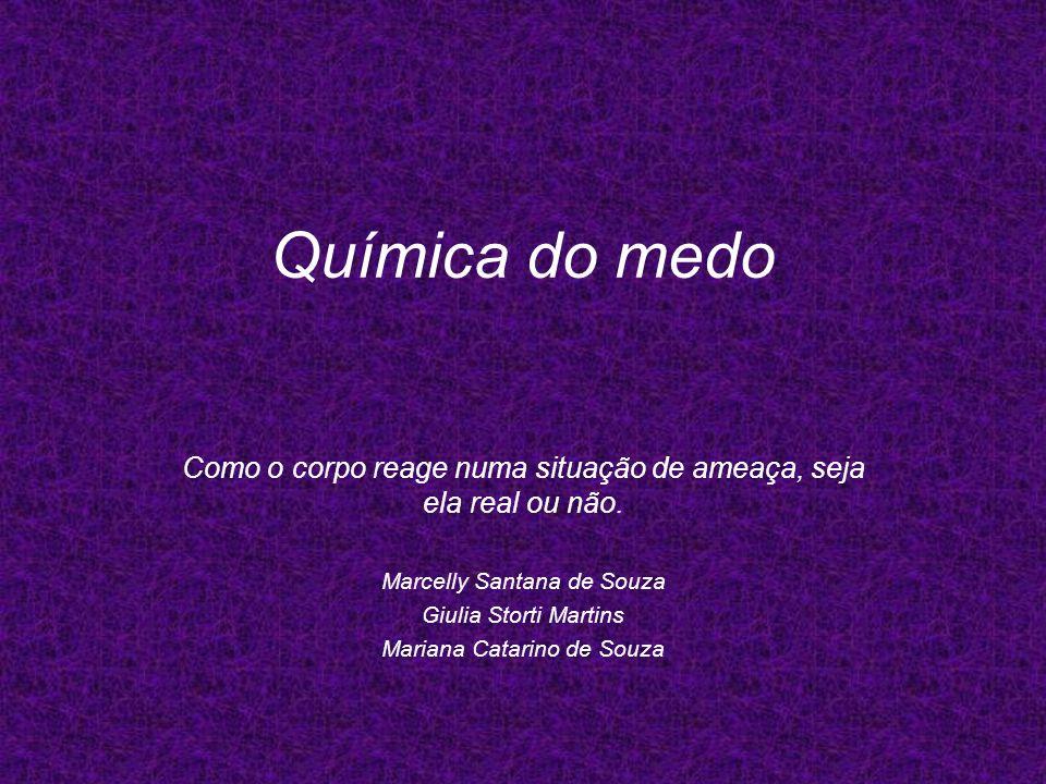 Química do medo Como o corpo reage numa situação de ameaça, seja ela real ou não. Marcelly Santana de Souza.