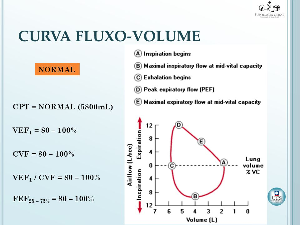 CURVA FLUXO-VOLUME NORMAL CPT = NORMAL (5800mL) VEF1 = 80 – 100%