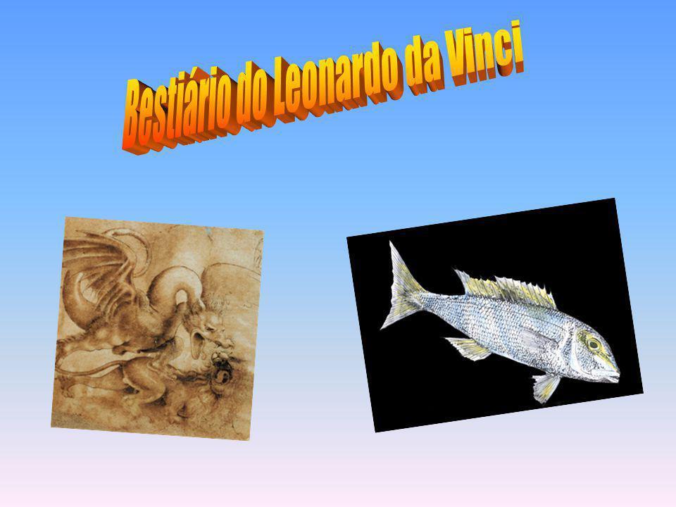 Bestiário do Leonardo da Vinci