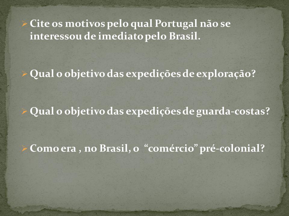 Cite os motivos pelo qual Portugal não se interessou de imediato pelo Brasil.