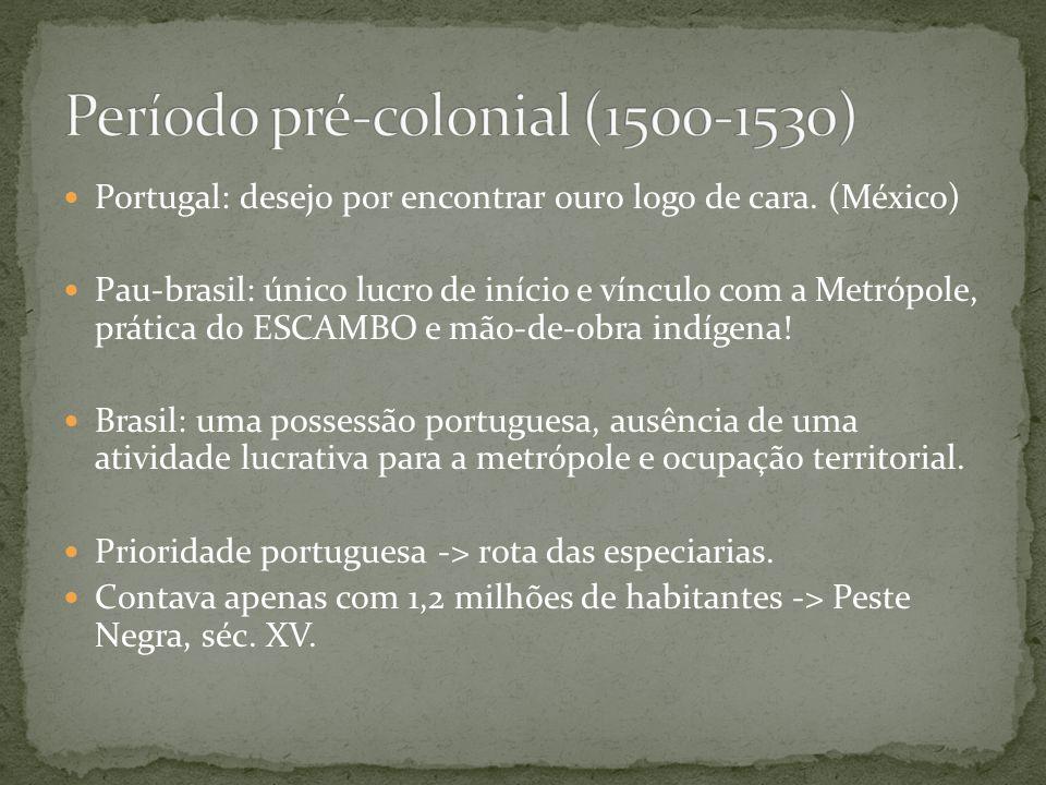 Período pré-colonial (1500-1530)