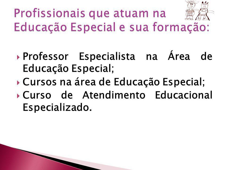 Profissionais que atuam na Educação Especial e sua formação: