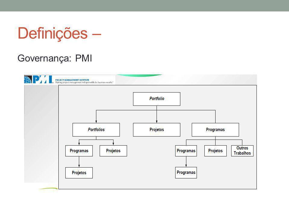 Definições – Governança: PMI