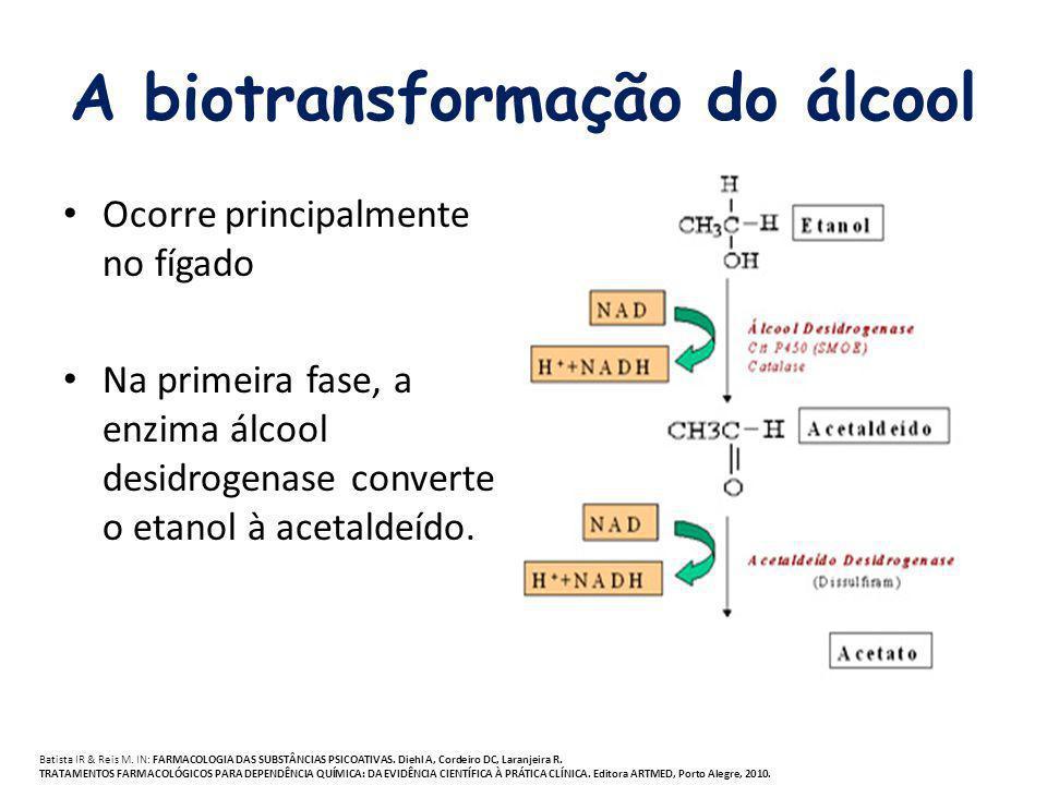 A biotransformação do álcool
